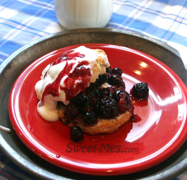Red White and BlueShortcake
